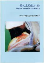 31. 馬の水胞性口炎